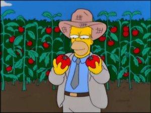 TSTO cletuts's farm tomacco