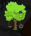 tsto treeswing