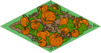 Tapped_Out_Pumpkin_Patch