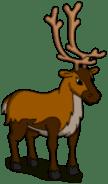reindeer_transimage