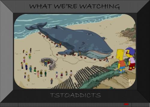 Whale-16-800x573