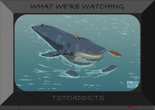 Whale-35-800x573