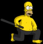 Homer Ninja 2