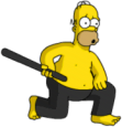 Homer Ninja 3