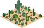 cactus patch