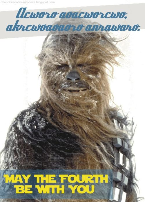 chewie_4th