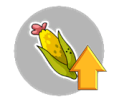 ico_terwilligers_upgrade_corn