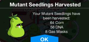 Mutant Seedlings Harvested