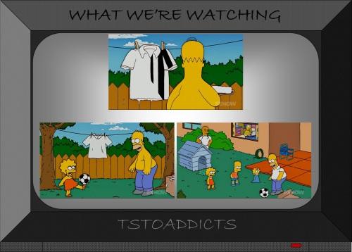 Homer & Lisa Simpsons Soccer Referee 4