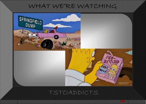 Springfield Dump Mr. Sparkle Simpsons