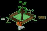 redwoodlevel1