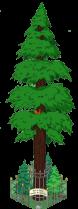 redwoodlevel9