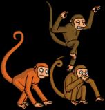 viciousmonkeys_tap_image_9